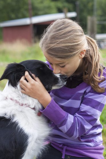a girl showing affection to her Border Collie dog