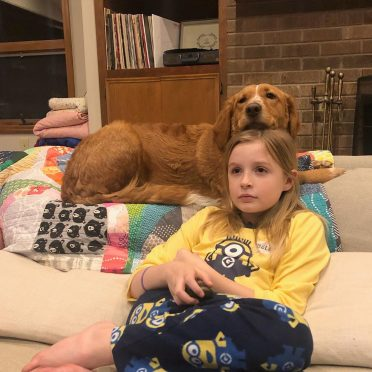 a Golden Border Retriever and a girl watching TV on the couch
