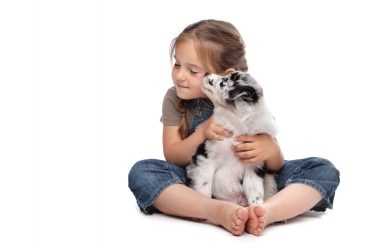 Little girl hugging a blue merle Border Collie puppy