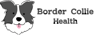 BorderCollieHealth